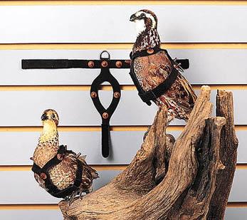 Pigeon and Quail Restraint Harnesses