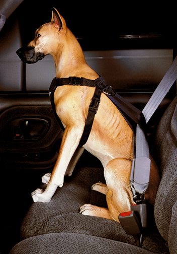 Pet Car Safety Harness