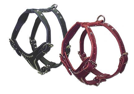 Adjustable Studded 2-Ply Latigo Harness