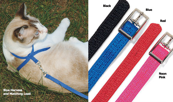 Figure 8 Cat Harness and Lead